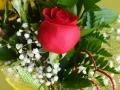 floral-arrangement-2