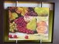 grapes-portrait